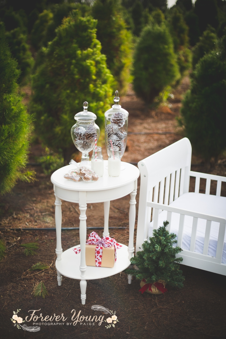 San Diego Christmas Tree Farm Photoshoot | Forever Young Photography By Paige-10