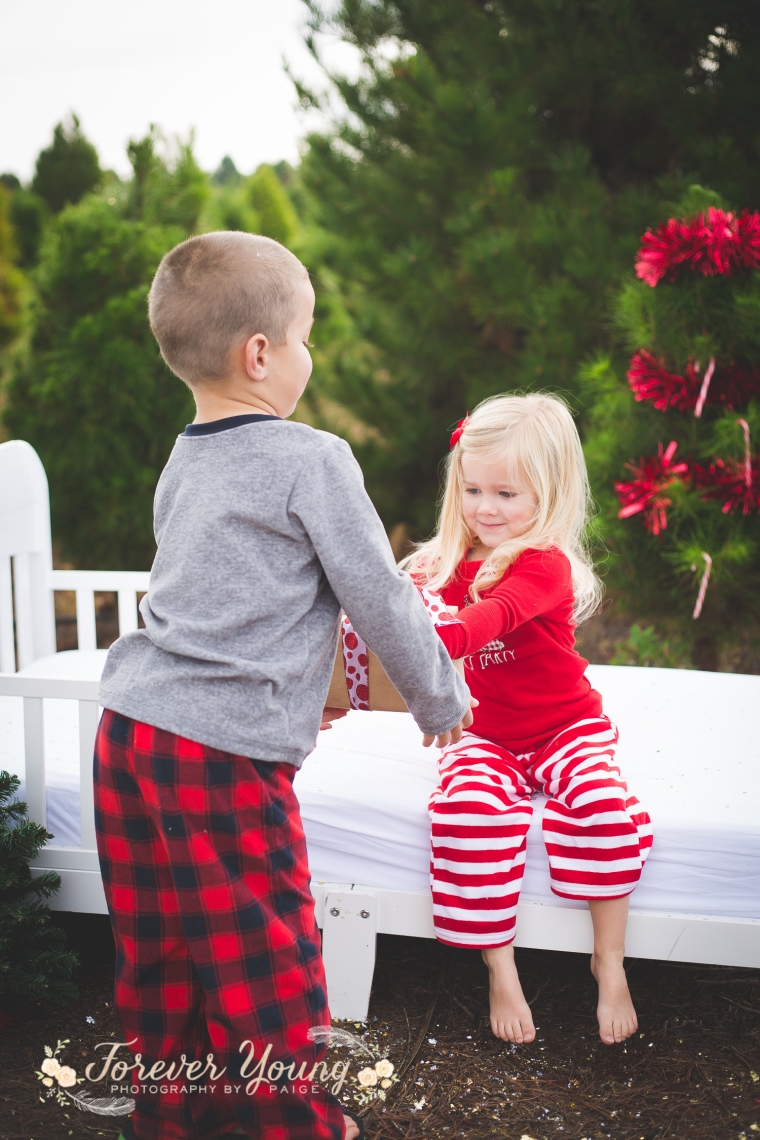 San Diego Christmas Tree Farm Photoshoot | Forever Young Photography By Paige-100