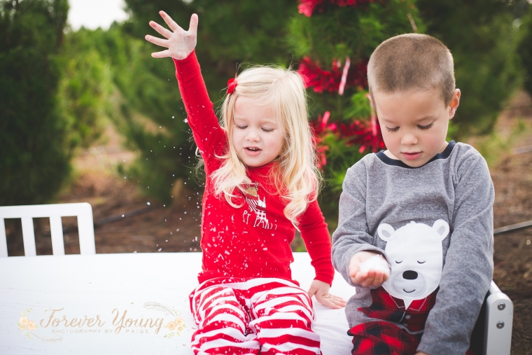 San Diego Christmas Tree Farm Photoshoot | Forever Young Photography By Paige-106
