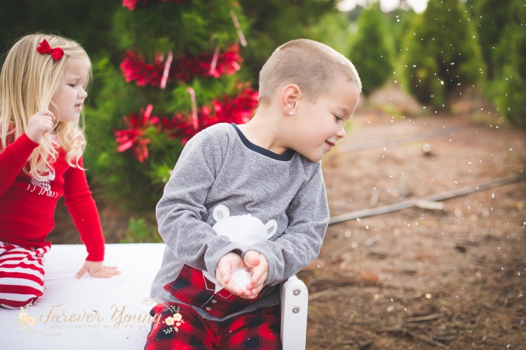 San Diego Christmas Tree Farm Photoshoot | Forever Young Photography By Paige-107