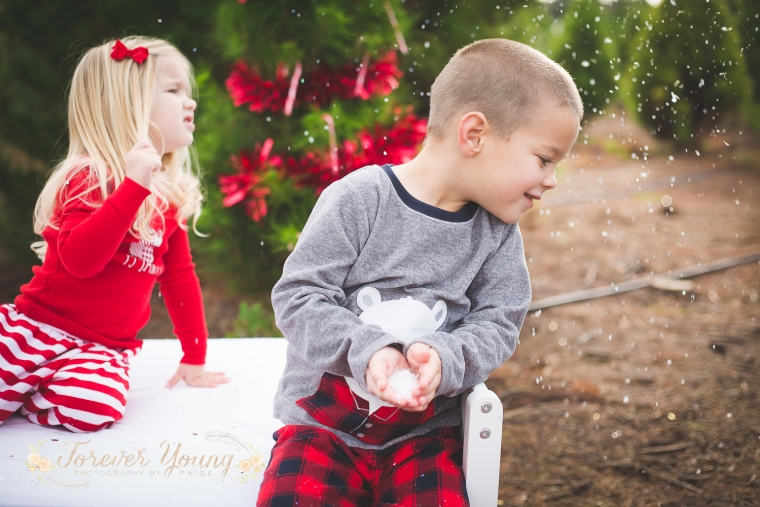 San Diego Christmas Tree Farm Photoshoot | Forever Young Photography By Paige-108