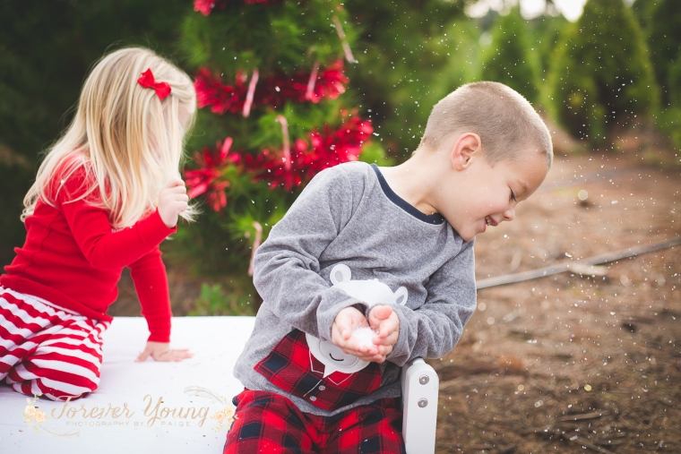 San Diego Christmas Tree Farm Photoshoot | Forever Young Photography By Paige-109