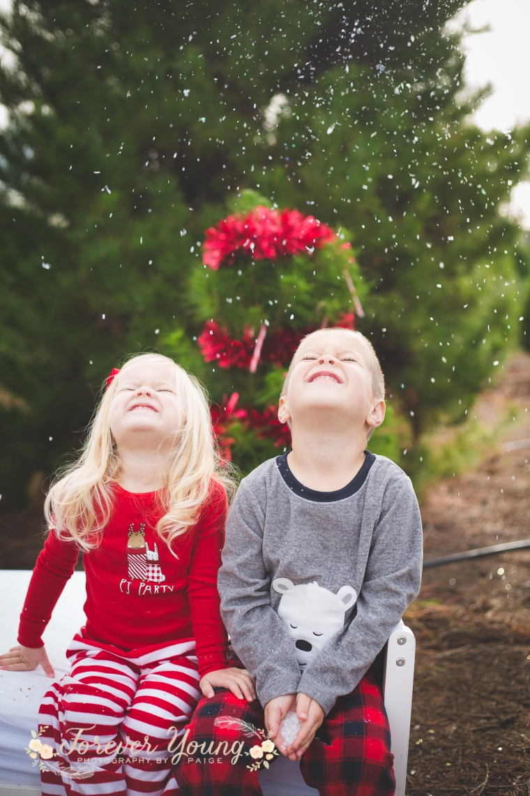 San Diego Christmas Tree Farm Photoshoot | Forever Young Photography By Paige-110