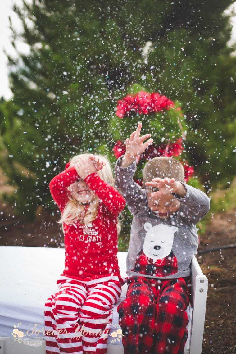 San Diego Christmas Tree Farm Photoshoot | Forever Young Photography By Paige-113