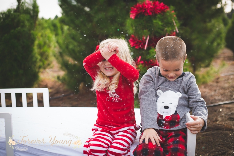 San Diego Christmas Tree Farm Photoshoot | Forever Young Photography By Paige-114