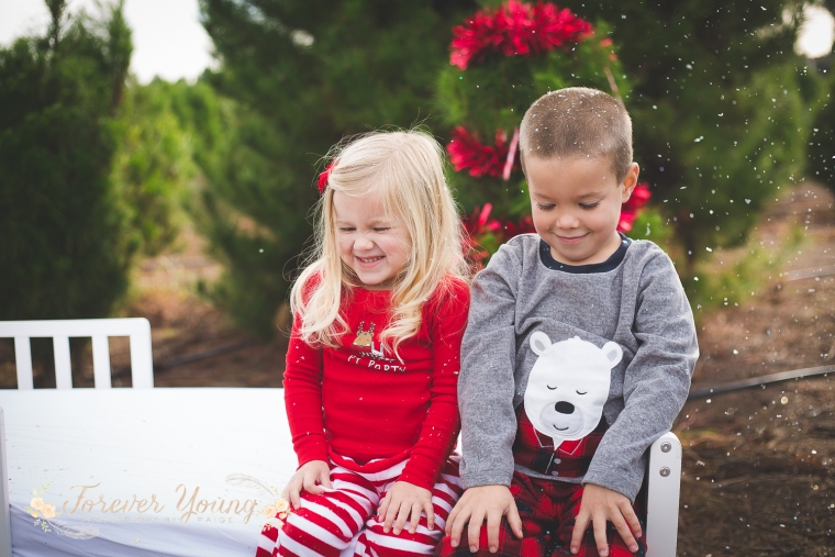 San Diego Christmas Tree Farm Photoshoot | Forever Young Photography By Paige-115