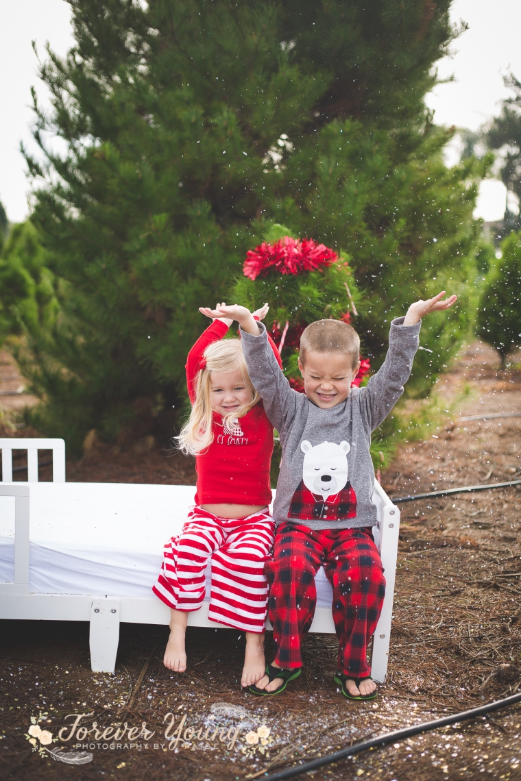 San Diego Christmas Tree Farm Photoshoot | Forever Young Photography By Paige-116