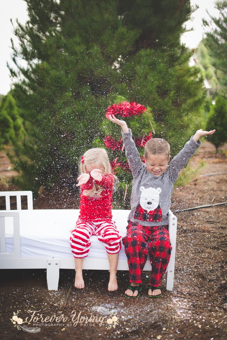 San Diego Christmas Tree Farm Photoshoot | Forever Young Photography By Paige-119