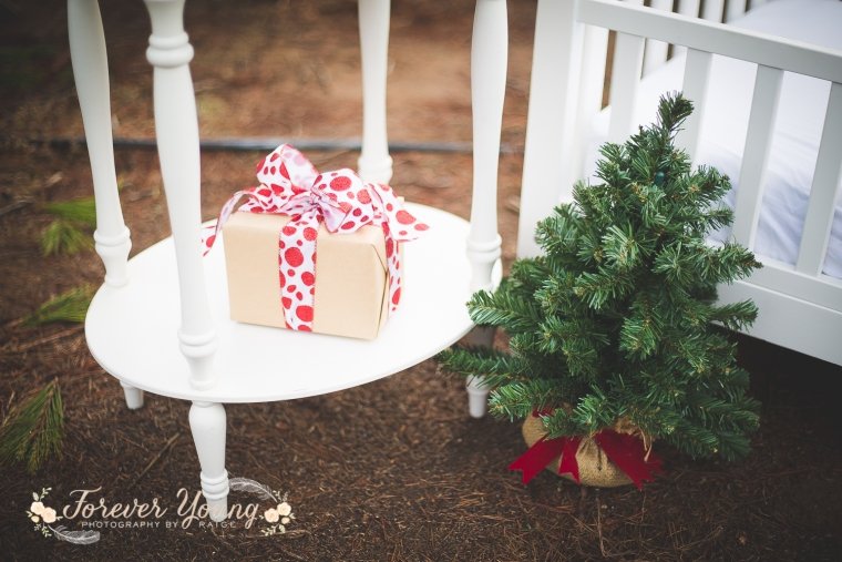 San Diego Christmas Tree Farm Photoshoot | Forever Young Photography By Paige-12