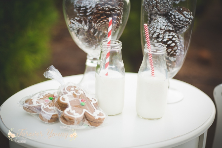 San Diego Christmas Tree Farm Photoshoot | Forever Young Photography By Paige-15