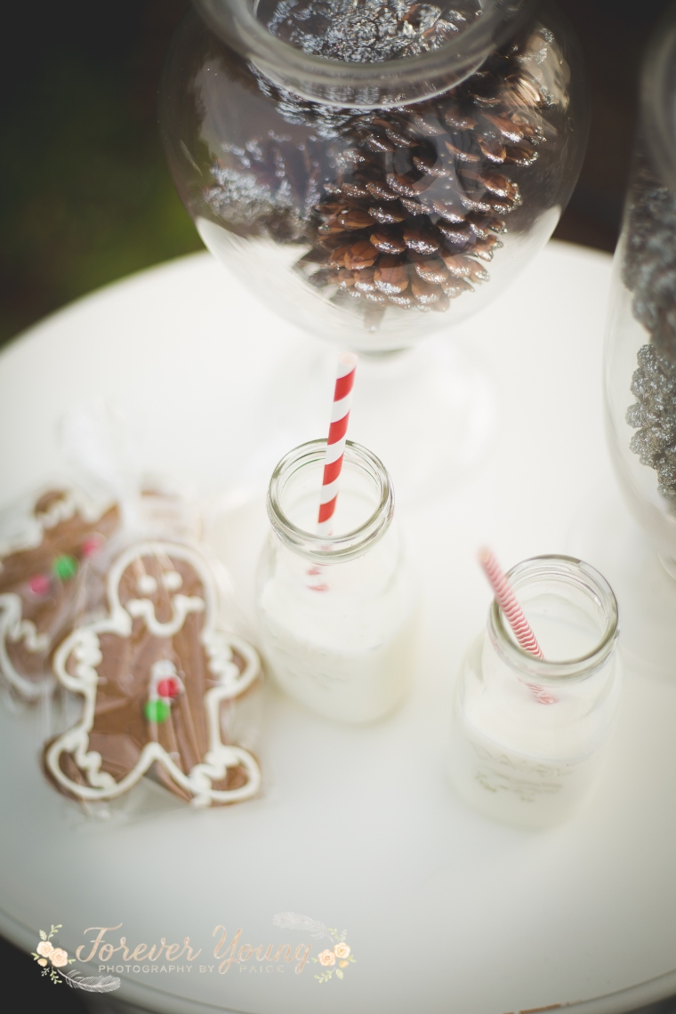 San Diego Christmas Tree Farm Photoshoot | Forever Young Photography By Paige-16