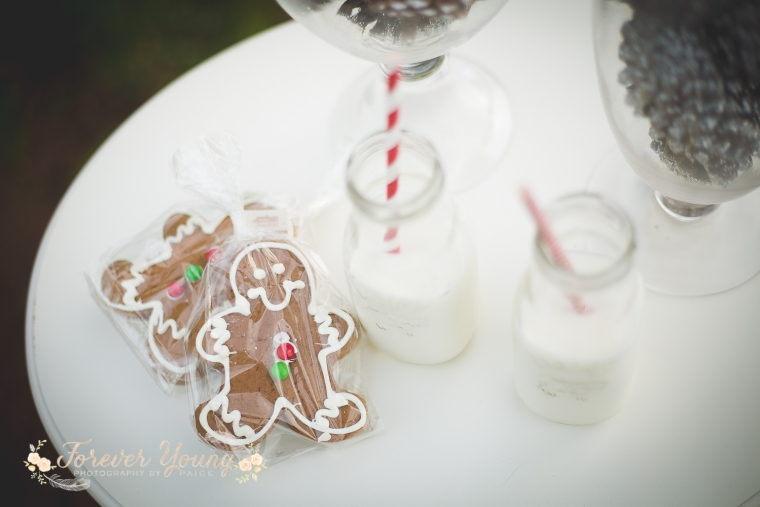 San Diego Christmas Tree Farm Photoshoot | Forever Young Photography By Paige-18