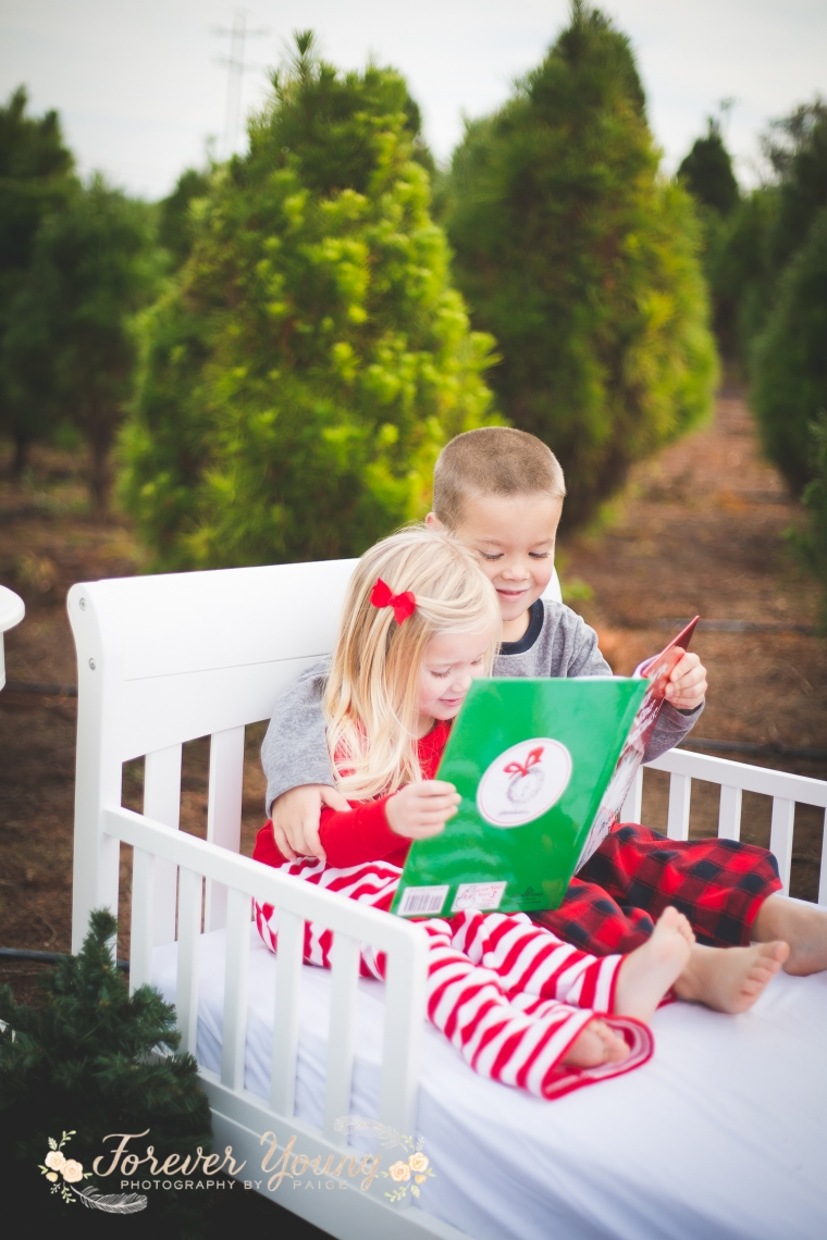 San Diego Christmas Tree Farm Photoshoot | Forever Young Photography By Paige-25