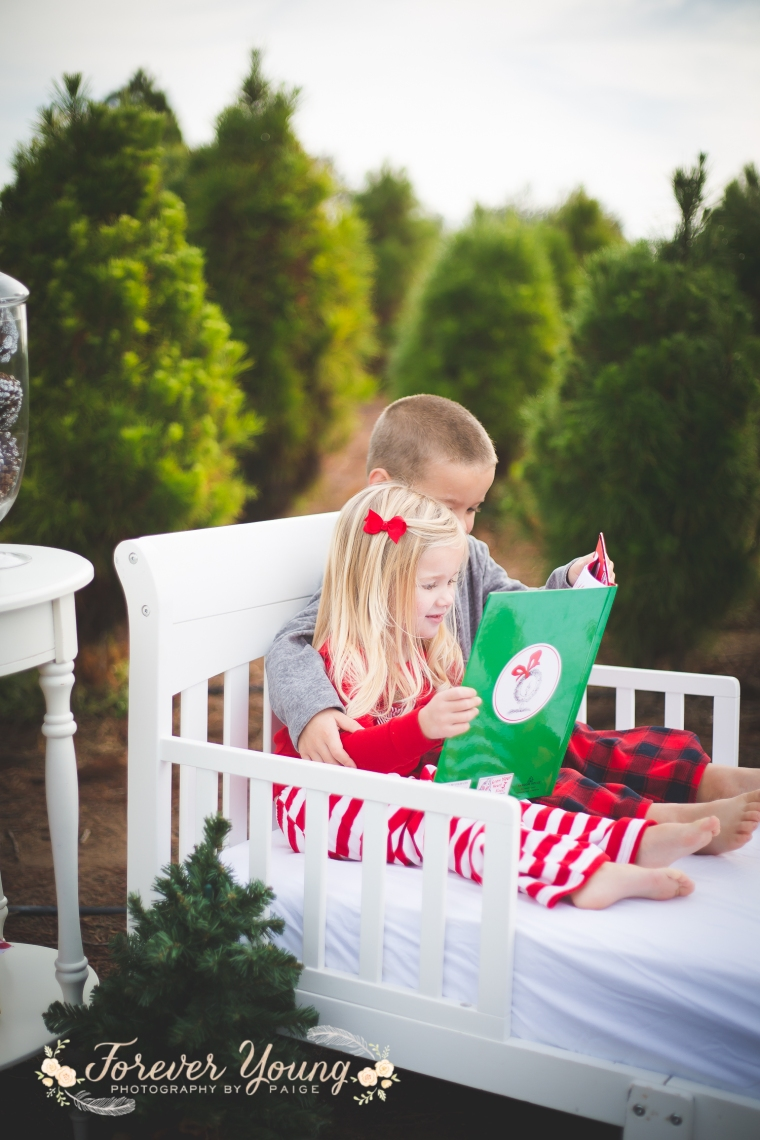 San Diego Christmas Tree Farm Photoshoot | Forever Young Photography By Paige-27