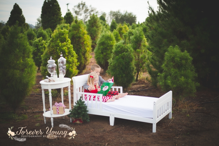 San Diego Christmas Tree Farm Photoshoot | Forever Young Photography By Paige-28