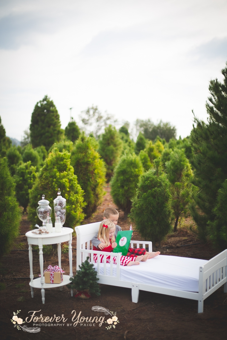 San Diego Christmas Tree Farm Photoshoot | Forever Young Photography By Paige-29