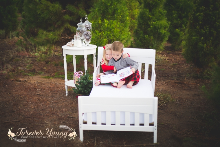 San Diego Christmas Tree Farm Photoshoot | Forever Young Photography By Paige-33