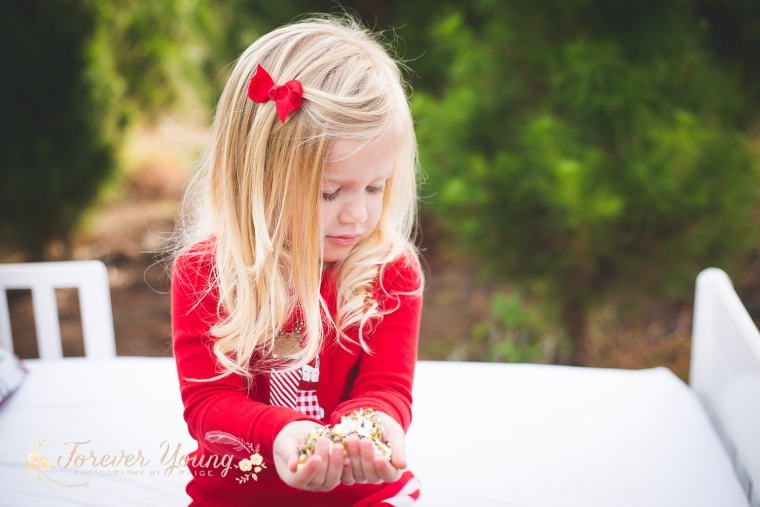 San Diego Christmas Tree Farm Photoshoot | Forever Young Photography By Paige-41