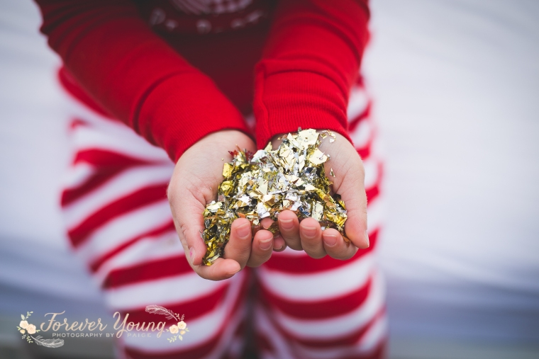 San Diego Christmas Tree Farm Photoshoot | Forever Young Photography By Paige-42