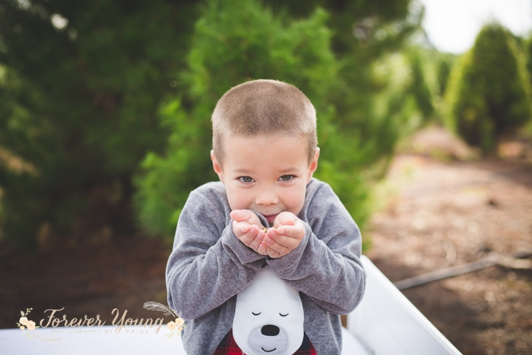 San Diego Christmas Tree Farm Photoshoot | Forever Young Photography By Paige-43