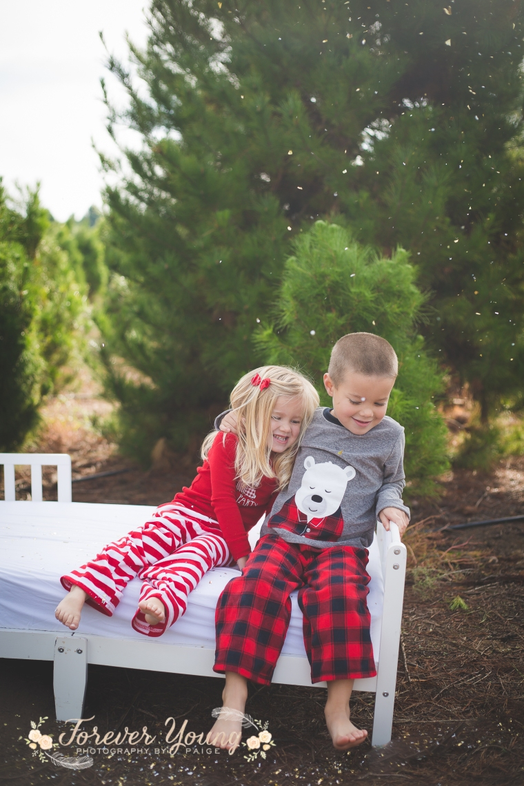 San Diego Christmas Tree Farm Photoshoot | Forever Young Photography By Paige-48