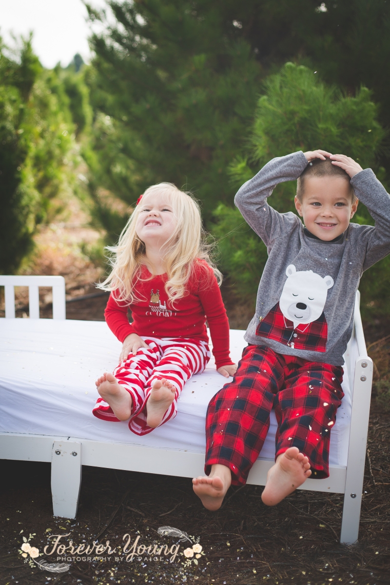 San Diego Christmas Tree Farm Photoshoot | Forever Young Photography By Paige-49