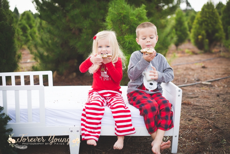 San Diego Christmas Tree Farm Photoshoot | Forever Young Photography By Paige-64