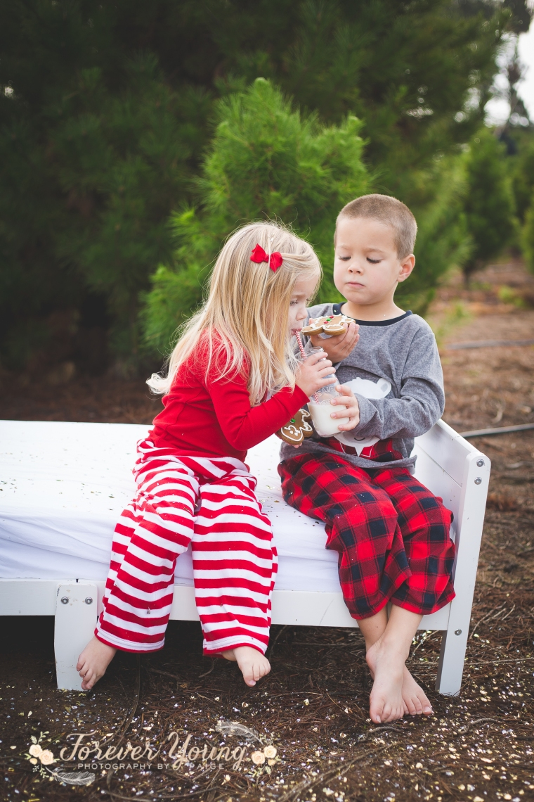 San Diego Christmas Tree Farm Photoshoot | Forever Young Photography By Paige-65