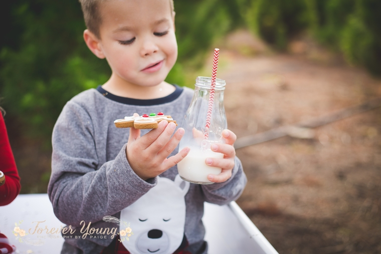San Diego Christmas Tree Farm Photoshoot | Forever Young Photography By Paige-69