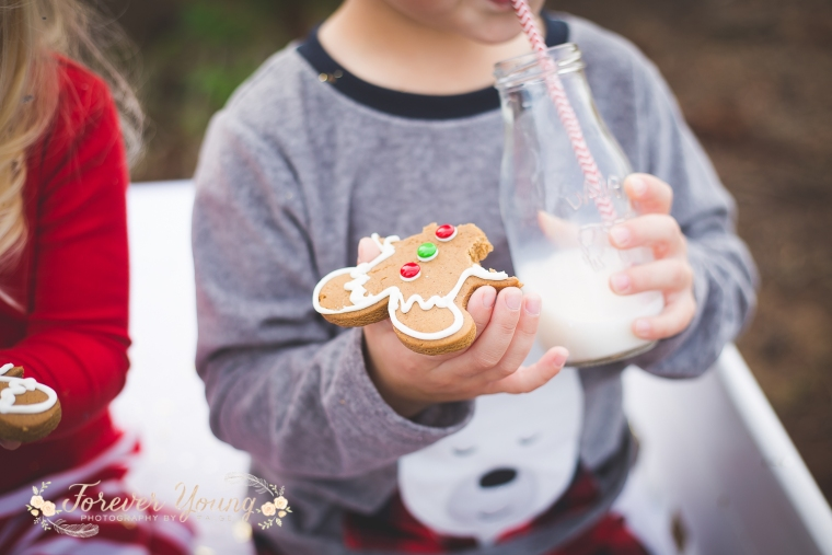 San Diego Christmas Tree Farm Photoshoot | Forever Young Photography By Paige-71