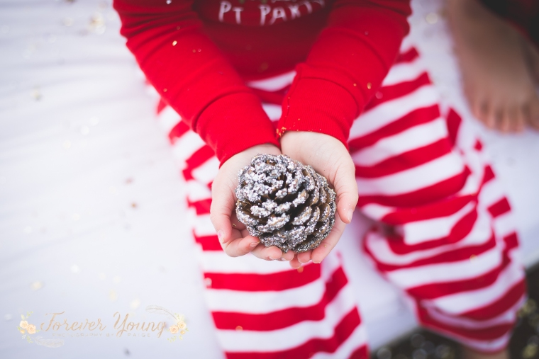 San Diego Christmas Tree Farm Photoshoot | Forever Young Photography By Paige-76