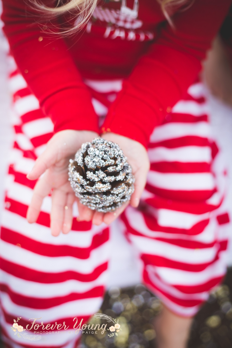 San Diego Christmas Tree Farm Photoshoot | Forever Young Photography By Paige-77