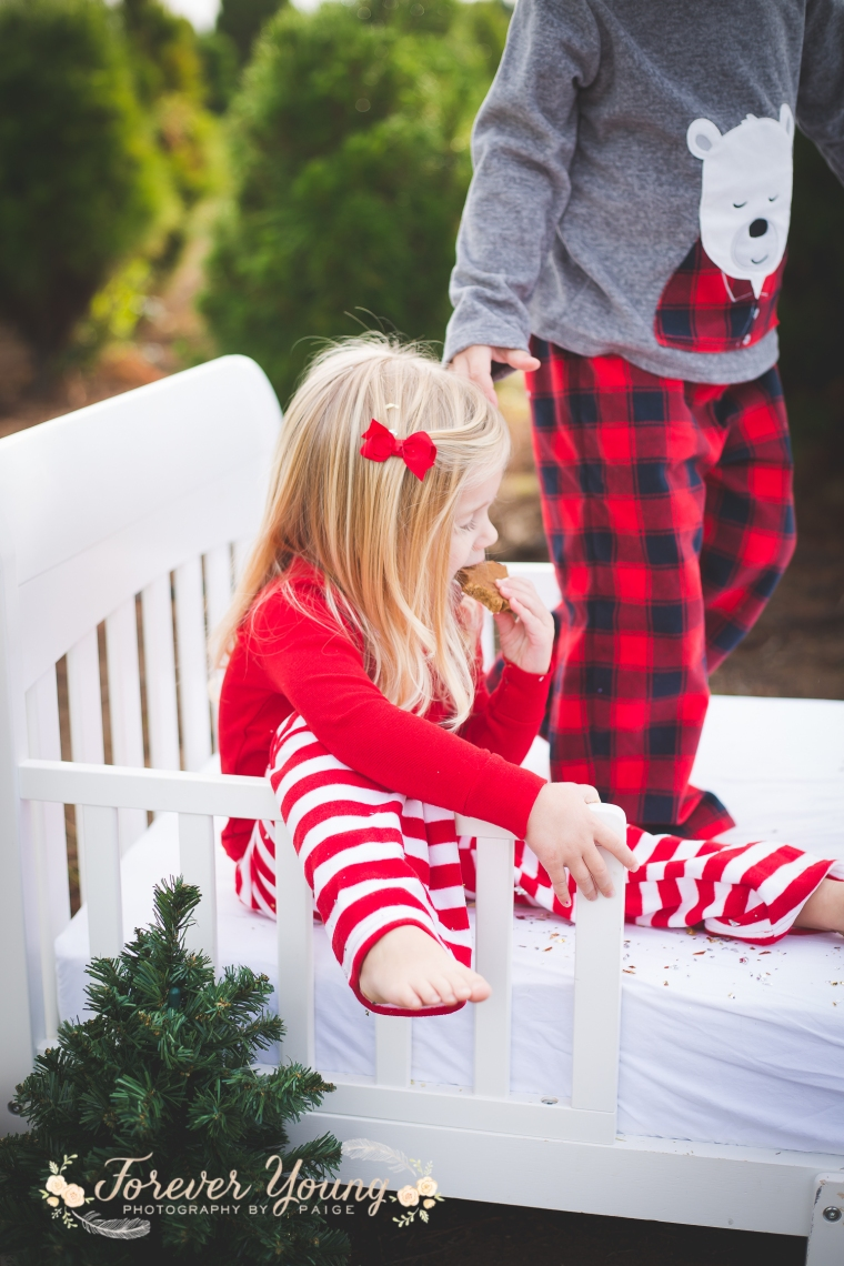 San Diego Christmas Tree Farm Photoshoot | Forever Young Photography By Paige-78