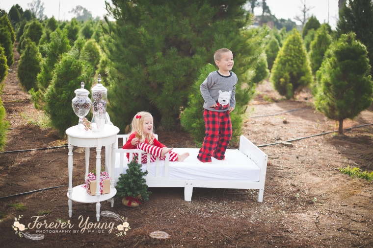 San Diego Christmas Tree Farm Photoshoot | Forever Young Photography By Paige-79