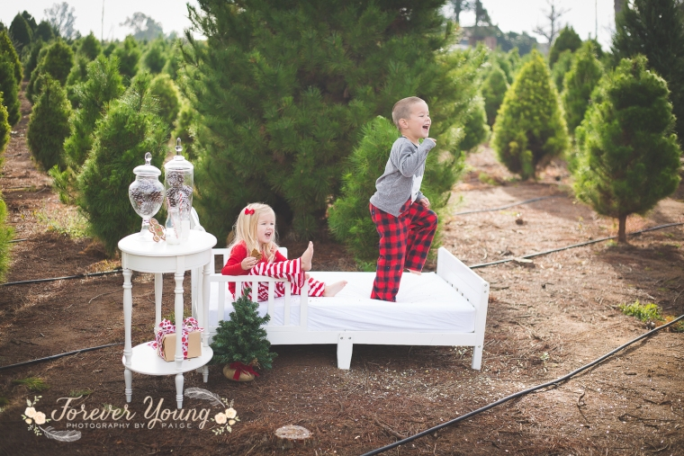 San Diego Christmas Tree Farm Photoshoot | Forever Young Photography By Paige-80