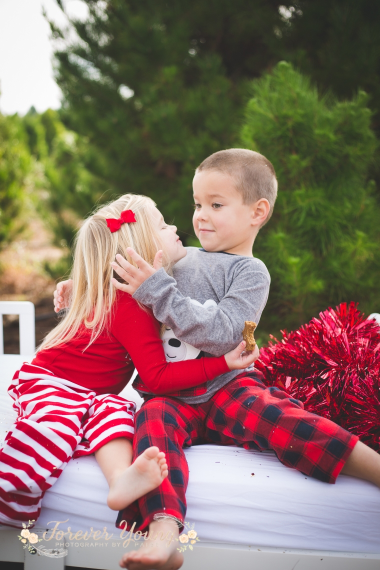 San Diego Christmas Tree Farm Photoshoot | Forever Young Photography By Paige-87