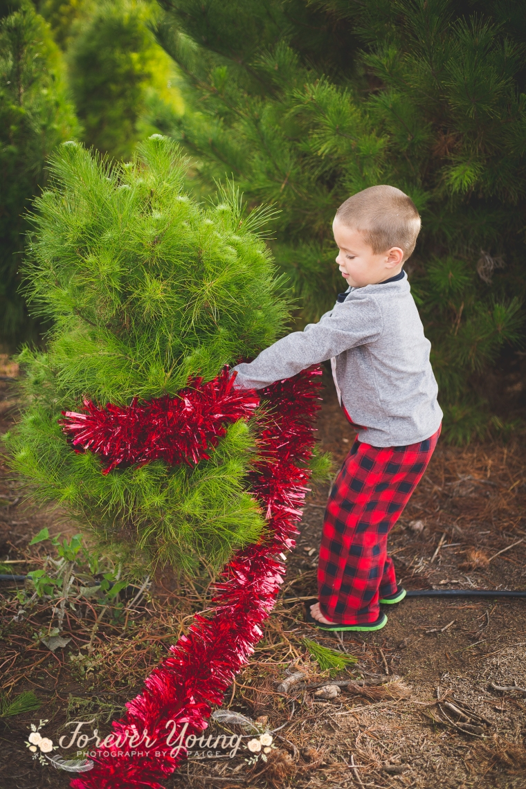 San Diego Christmas Tree Farm Photoshoot | Forever Young Photography By Paige-88