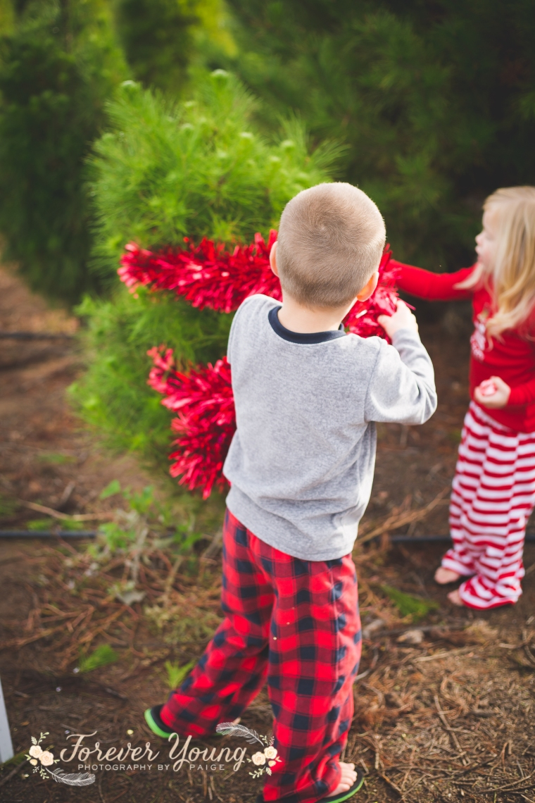 San Diego Christmas Tree Farm Photoshoot | Forever Young Photography By Paige-90
