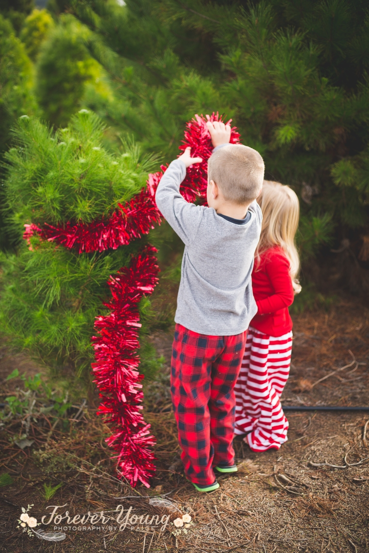 San Diego Christmas Tree Farm Photoshoot | Forever Young Photography By Paige-91