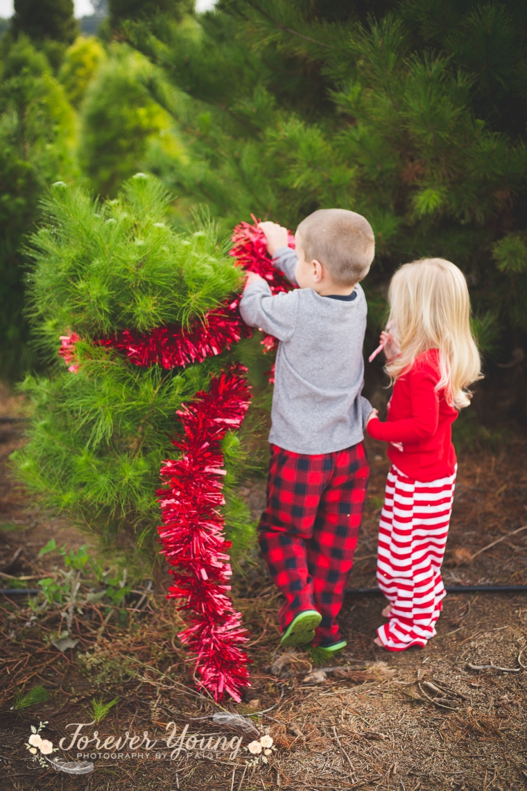 San Diego Christmas Tree Farm Photoshoot | Forever Young Photography By Paige-92