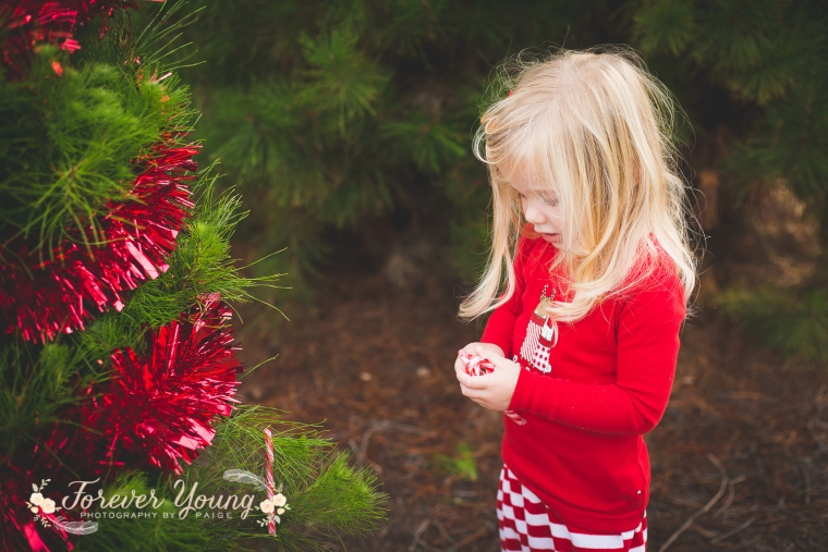 San Diego Christmas Tree Farm Photoshoot | Forever Young Photography By Paige-94
