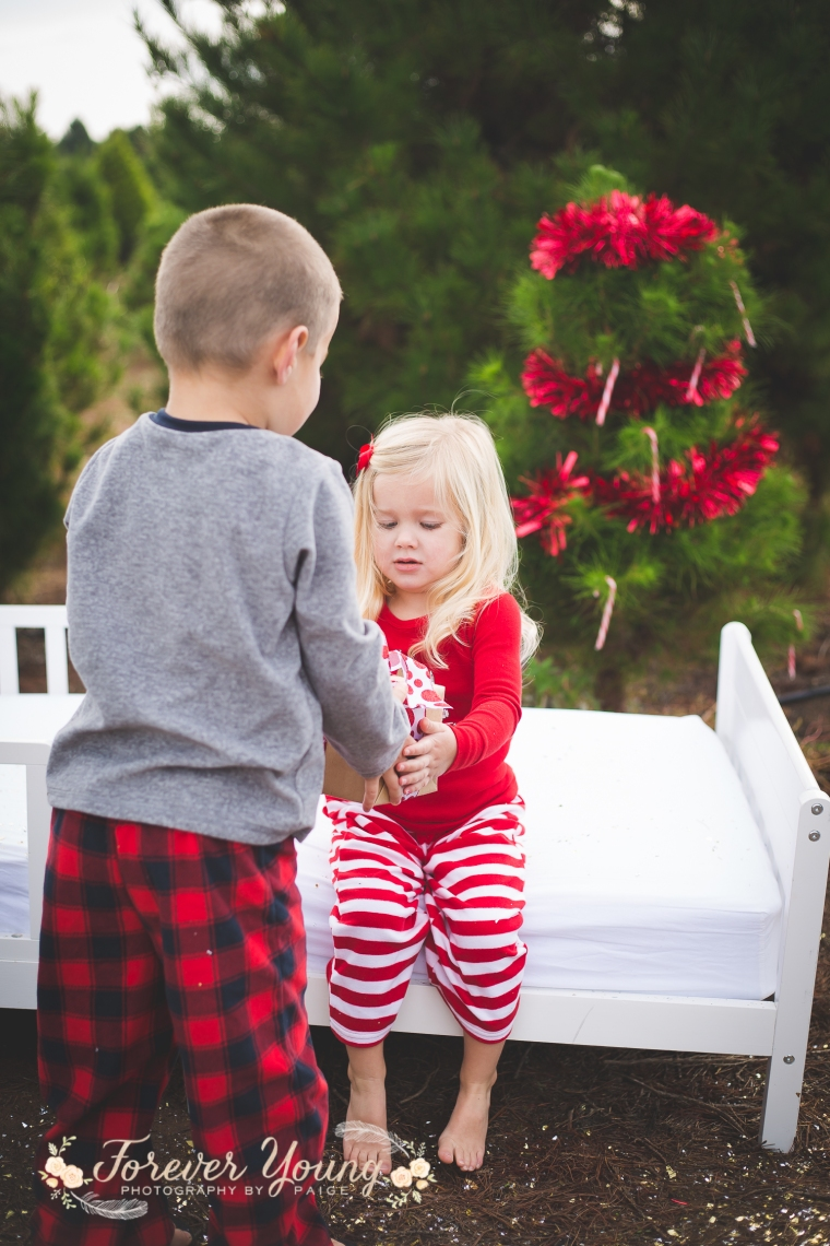 San Diego Christmas Tree Farm Photoshoot | Forever Young Photography By Paige-97