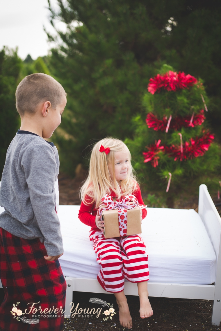 San Diego Christmas Tree Farm Photoshoot | Forever Young Photography By Paige-98